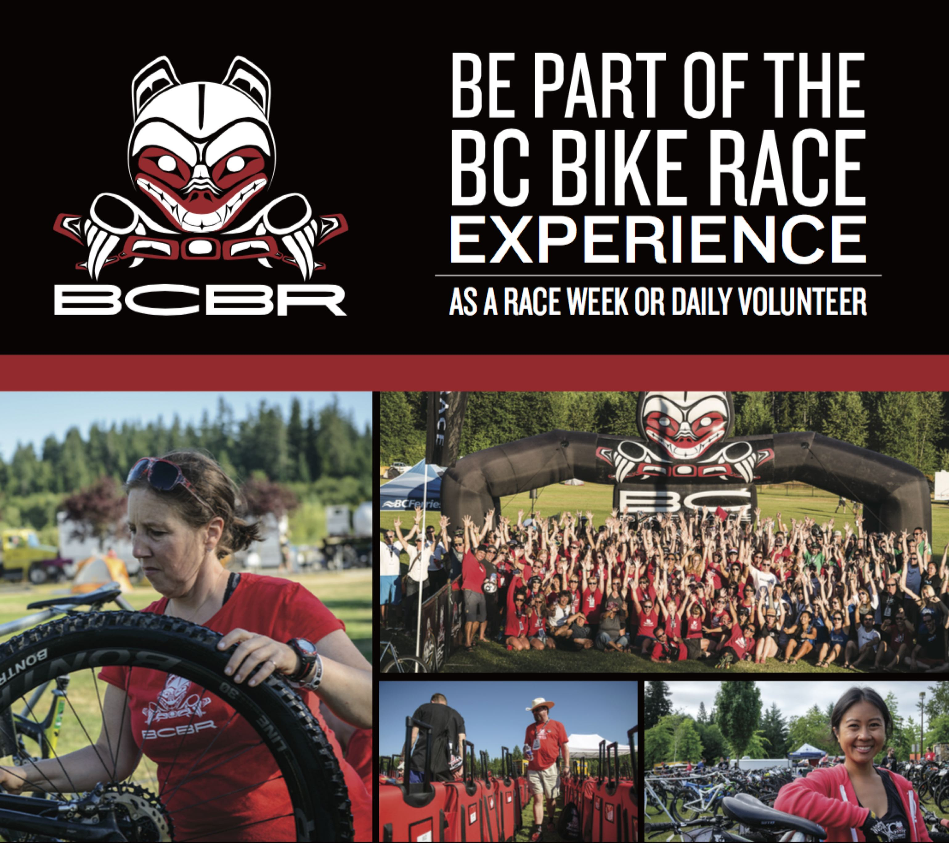 BCBR web site vol ad